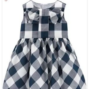 Baby Girl Carters Navy Gingham Lawn Dress 9M